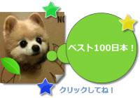 ベスト100日本!WebマーケティングとSEO対策